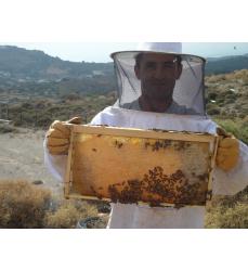 Thymian Honig aus den Bergen Kretas.