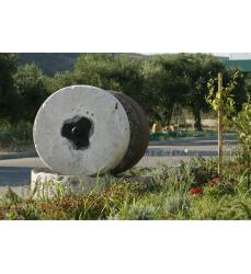 Bestes Olivenöl aus Kreta, natürlich kaltgepresst.